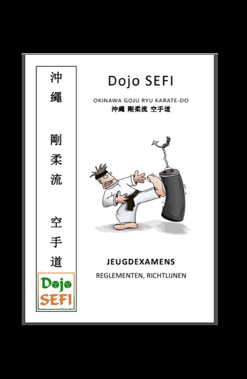 Dojo-SEFI-jeugdboekje-jeugdexamens