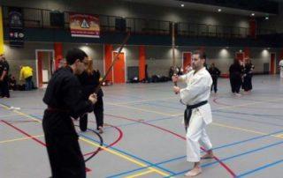 SE-FI-karate-Nijmegen-Rotterdam-kempo-goju-ryu-400x533