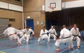 Training-SE-FI-nijmegen-karate-400x286