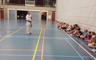 SE-FI-karate-clinic-basisschool-Gérard-Theloesen-400x533