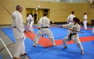 SE-FI-karate-Nijmegen-Bo-jutsu-Kayleigh-de-Block-Gérard-Theloesen-kopie-400x267