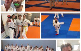 sefi-deelname-100-man-irikumi-gojuryu-se-fi-karate-nijmegen-400x400