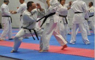 Gerard-Theloesen-Kayleigh-de-Block-SE-Fi-Nijmegen-Dag-van-het-karate